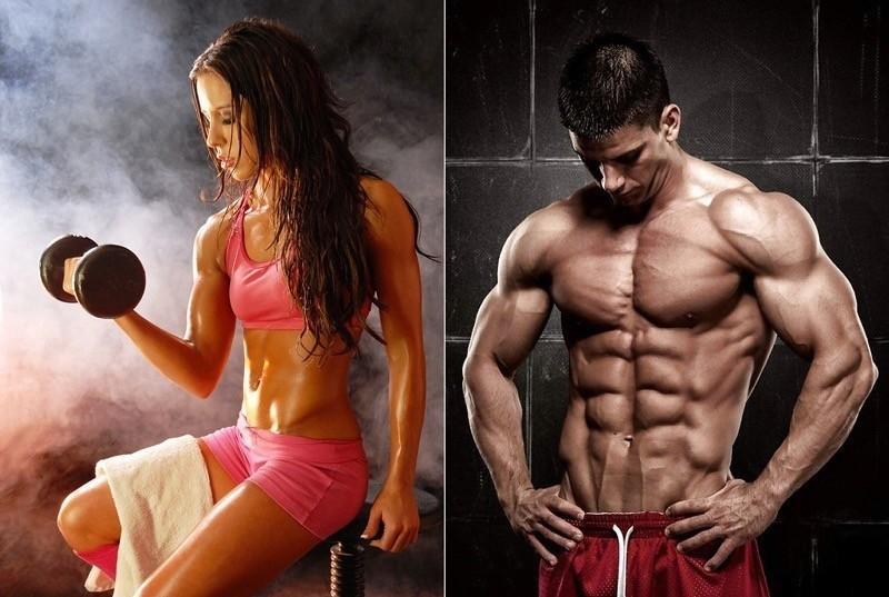 наращивание мышечной массы упражнения с картинками которые являются