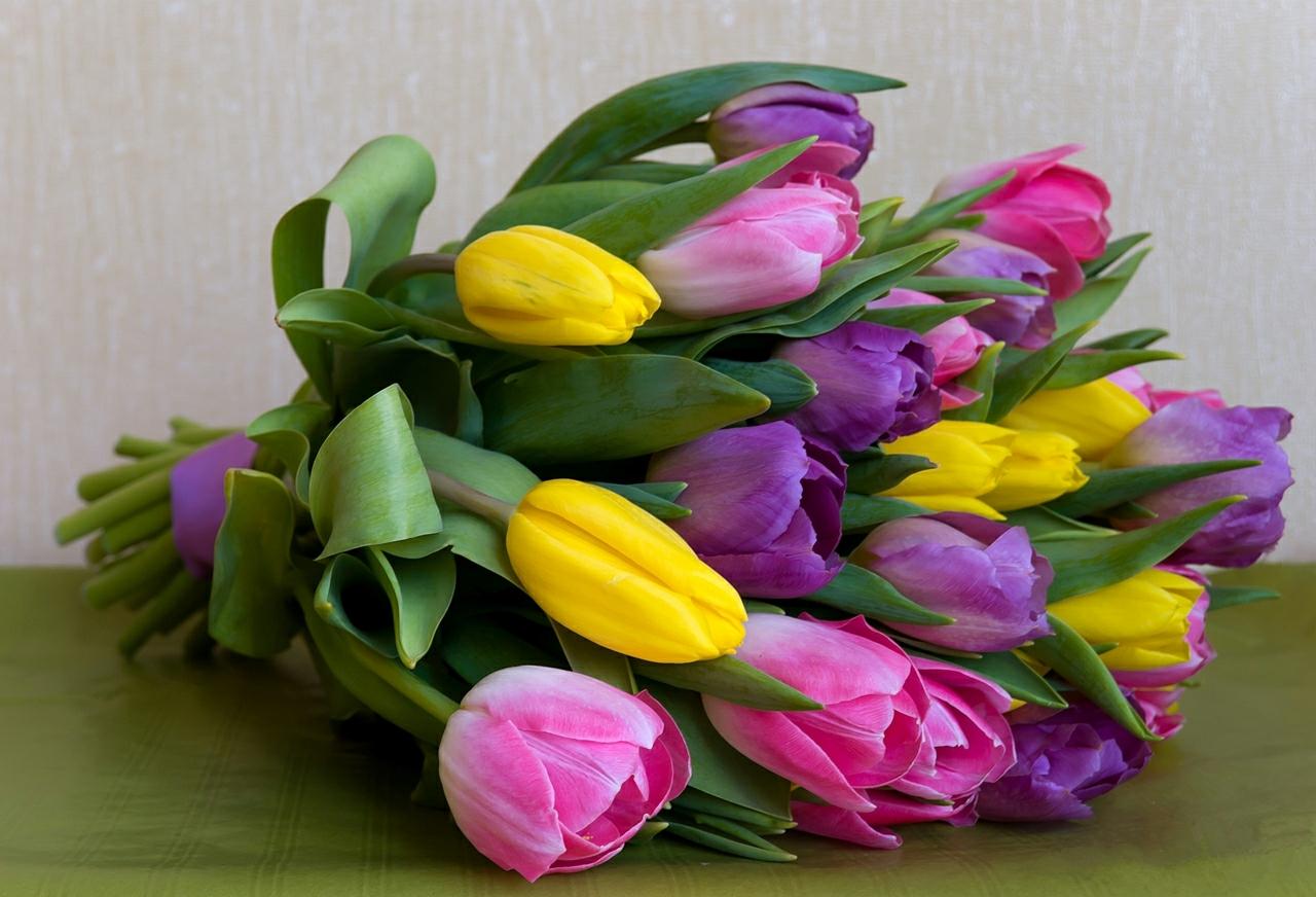 С днем рождения фото тюльпаны красивые