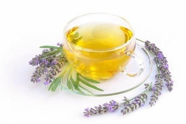 Чай с лавандой и его полезные свойства, рецепты, лаванда чай свойства.